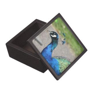 Beautiful Peacock Premium Gift Box