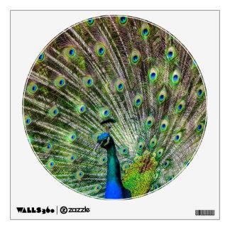 Beautiful Peacock Wall Stickers