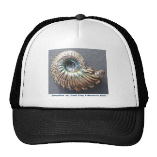 Beautiful pearly ammonite fossil trucker hat