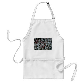 Beautiful Pebbles from Petit Terre Isles, Guadelou Adult Apron