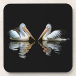 Beautiful pelicans reflection on black background beverage coaster