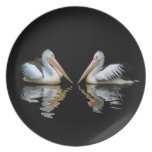 Beautiful pelicans reflection on black background melamine plate
