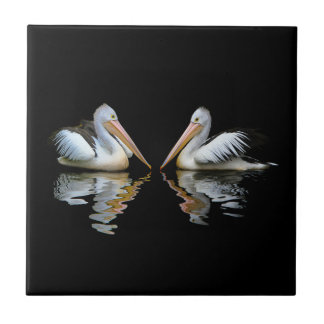 Beautiful pelicans reflection on black background small square tile