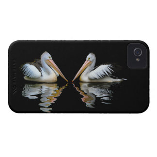 Beautiful pelicans reflection on black water, gift iPhone 4 Case-Mate case