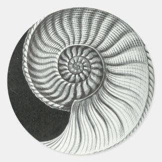 Beautiful pencil drawing of Amaltheus ammonite Classic Round Sticker