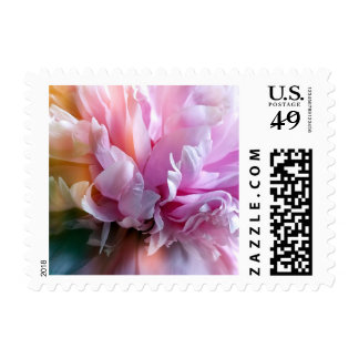 Beautiful Peony Flower Stamp