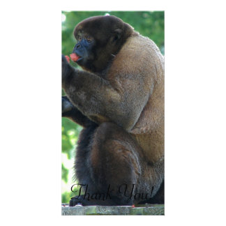 Beautiful Picture of Brown Wooly Monkey Card