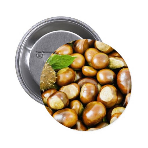 Beautiful Picture Of Conkers With A Leaf Pinback Button