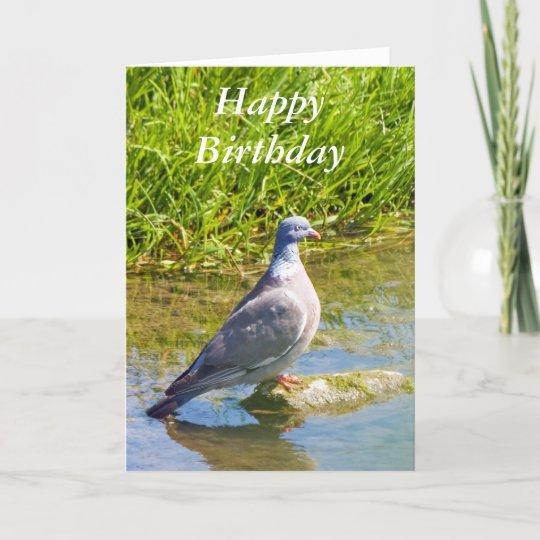 Beautiful Pigeon Bir Happy Birthday Greetings Card Zazzle