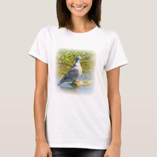 Beautiful pigeon bird photo ladies, womens t-shirt