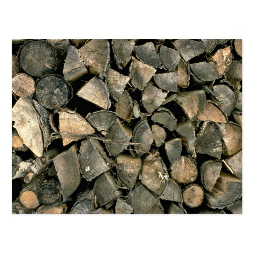 Beautiful Pile of wood Postcard