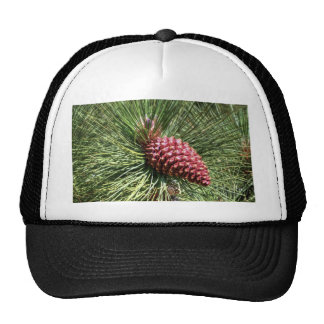 Beautiful Pine Trucker Hat