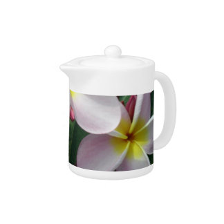Beautiful Pink and Yellow Plumeria Teapot