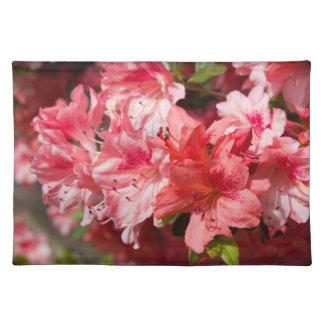 Beautiful Pink Azaleas Placemats