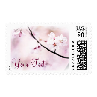 Beautiful Pink Cherry Blossoms White Sunshine Tree Postage