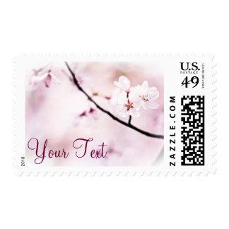 Beautiful Pink Cherry Blossoms White Sunshine Tree Postage Stamp