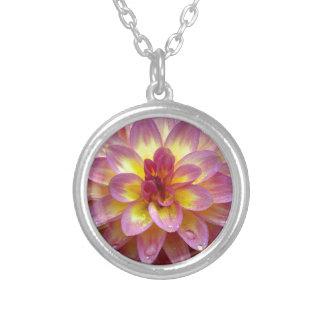 Beautiful pink dahlia flower with raindrops jewelry