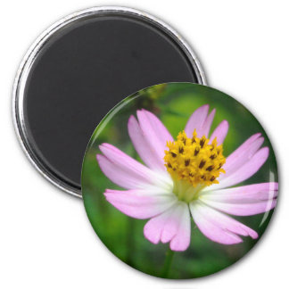 Beautiful pink flower 2 inch round magnet