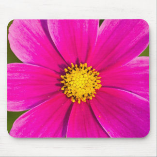 Beautiful pink flower bloom mouse pad
