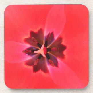 Beautiful Pink Flower Coaster