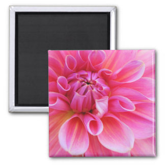 Beautiful Pink Flower Macro 2 Inch Square Magnet