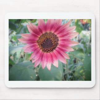 Beautiful pink flower mouse pad
