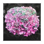 Beautiful Pink Flower Photo Canvas Print