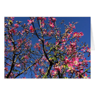Beautiful pink flowers and blue sky blank notecard stationery note card
