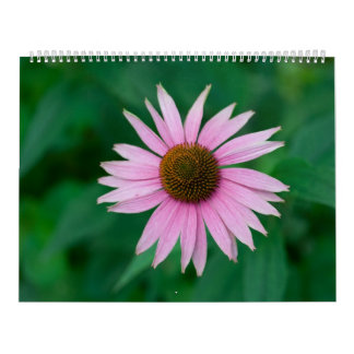 Beautiful Pink Flowers Calendar