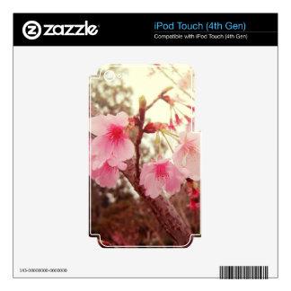 Beautiful pink flowers cherry sakura blossoms iPod touch 4G skins