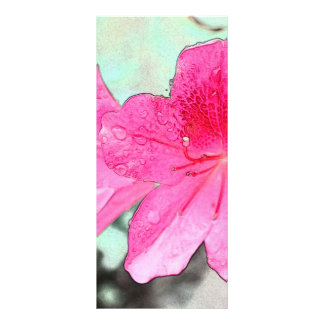 beautiful pink garden flowers in the rain. floral rack card