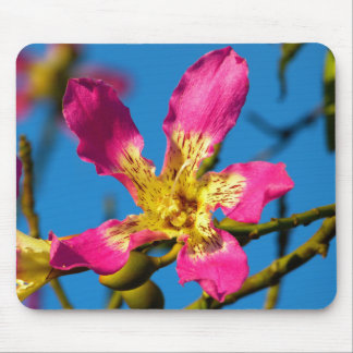 Beautiful pink kapok tree flower mouse pad