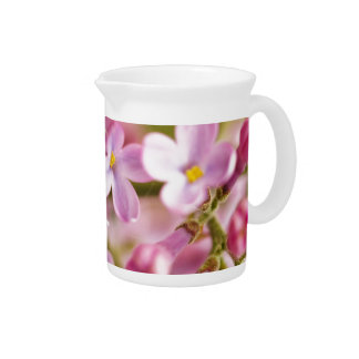 Beautiful Pink Orchid Flowers Beverage Pitcher