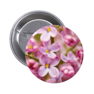 Beautiful Pink Orchid Flowers 2 Inch Round Button