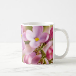 Beautiful Pink Orchid Flowers Classic White Coffee Mug