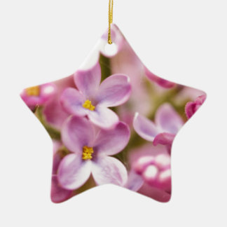 Beautiful Pink Orchid Flowers Double-Sided Star Ceramic Christmas Ornament