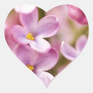 Beautiful Pink Orchid Flowers Heart Sticker