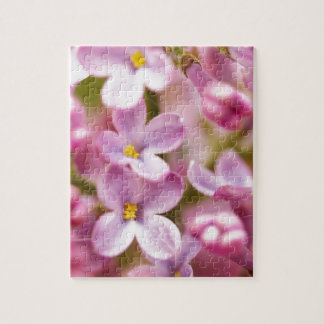 Beautiful Pink Orchid Flowers Puzzles