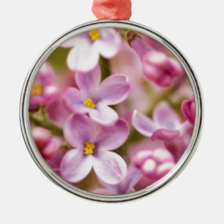 Beautiful Pink Orchid Flowers Round Metal Christmas Ornament