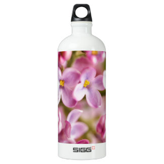 Beautiful Pink Orchid Flowers SIGG Traveler 1.0L Water Bottle