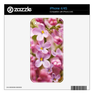 Beautiful Pink Orchid Flowers Skin For The iPhone 4