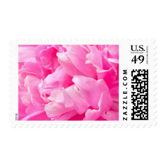 Beautiful pink peony flower floral custom postage