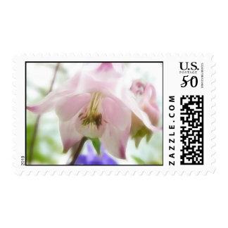 Beautiful Pink Petals - Aquilegia Postage