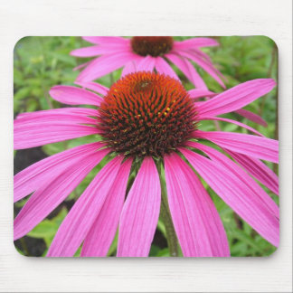 beautiful pink purple flowers mouse pad