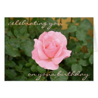 Beautiful Pink Rose Birthday Card