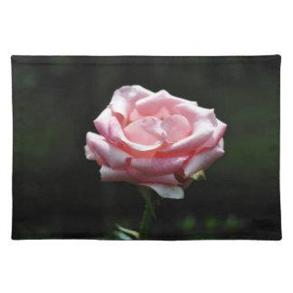 Beautiful Pink Rose Close-up Placemat