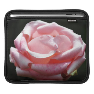 Beautiful Pink Rose Close-up Sleeve For iPads