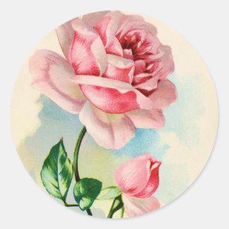 Beautiful Pink Rose Flower Classic Round Sticker