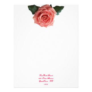Beautiful 'Pink Rose' Flower Letterhead Template