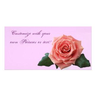 Beautiful 'Pink Rose' Flower Photo Greeting Card